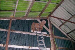 Uilenkast in boerenschuur